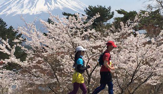 富士五湖100キロ(2019年4月)マラソン完走